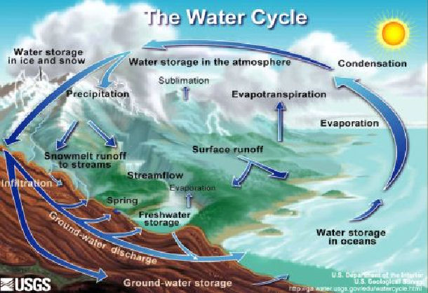 Eco System/Water Cycle Explanation